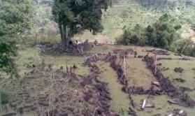 Situs Gunung Padang adalah Terbesar Dan Tertua Di Dunia